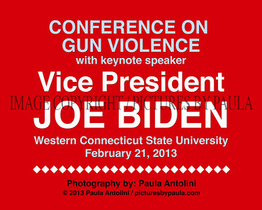 GUN VIOLENCE CONFERENCE with VICE PRESIDENT JOE BIDEN ~ Western Connecticut State University ~ Danbury, CT ~ February 21, 2013