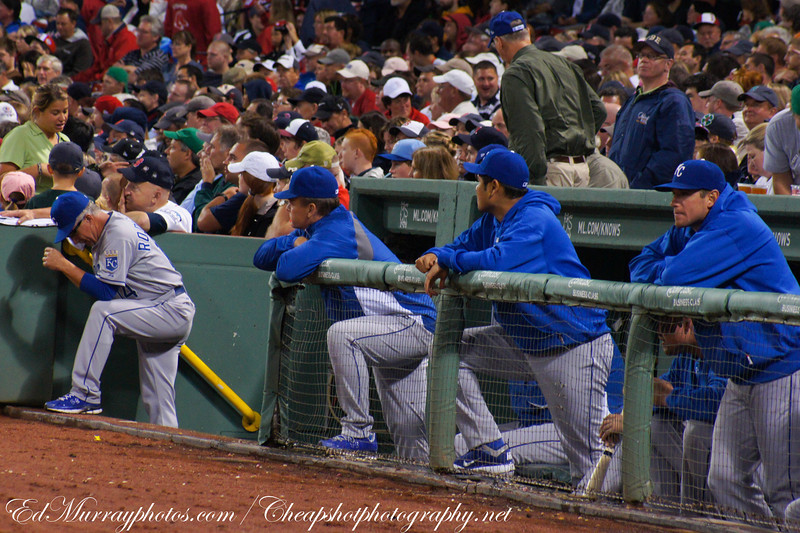 The Bench: The Royal's Bench