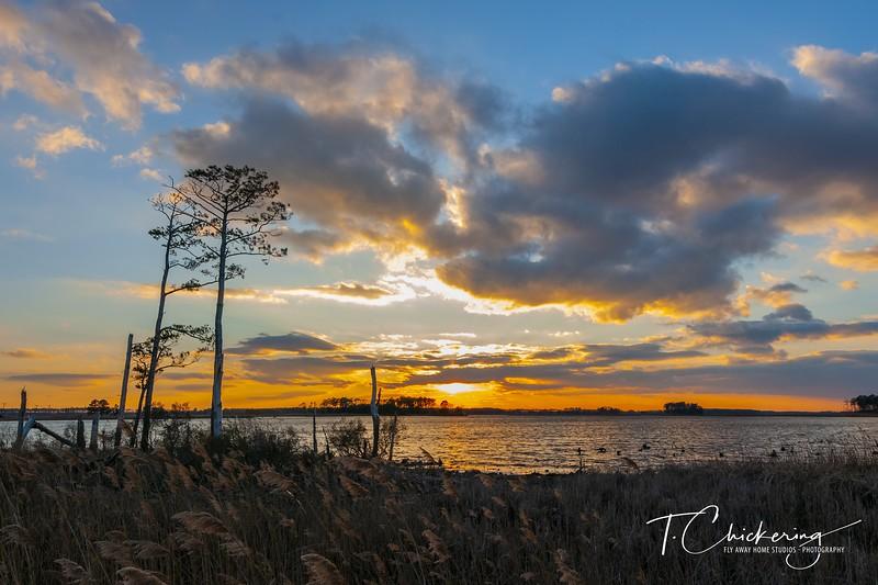 Blackwater Sunset Six.jpg