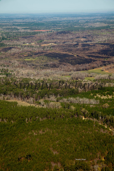 Neches River from the Air  024 copy