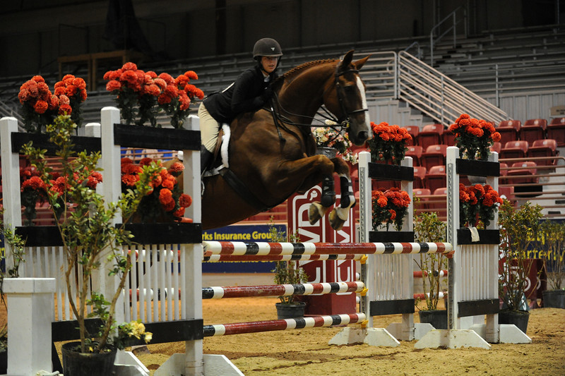 Horse show (80).jpg