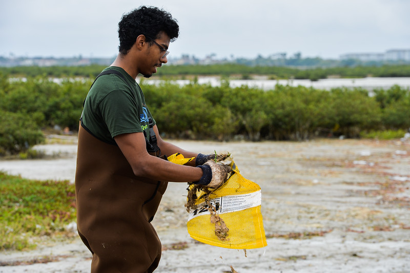Roderick Chapman cleans up the Campus Marsh.