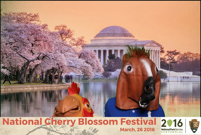 Boothie-NPS-CherryBlossom- (355).jpg