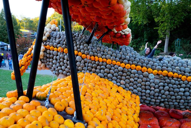 Ludwigsburg_Pumpkin_151003_039.jpg