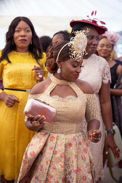 Ayotola Adebiyi - The Reception