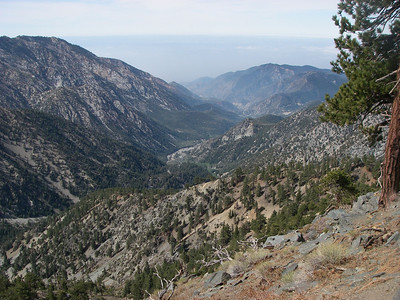 Mt. Baldy - May '07