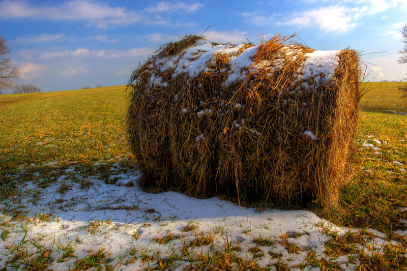 Snowing Hay<br /> Some hay with a little bit of snow left up top and it guarding the remaining snow from the sun rays.