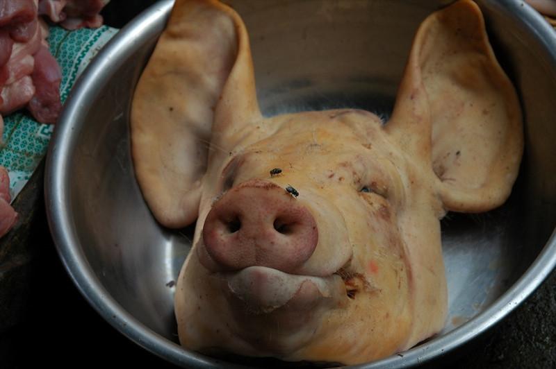 Pig's Head - Battambang, Cambodia