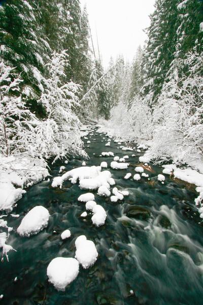 winter 2013-0286.jpg