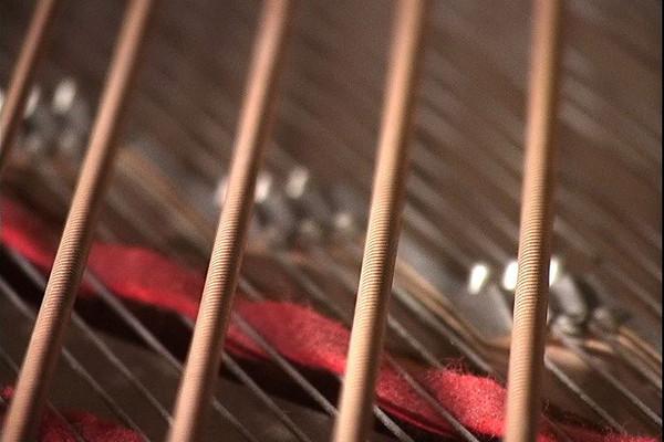 Piano_Strings_110702_01.jpg