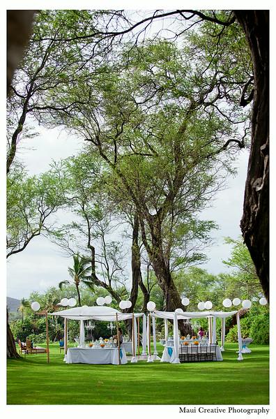 Maui_Wedding_Photographers_Sugarman_Estate_085.jpg