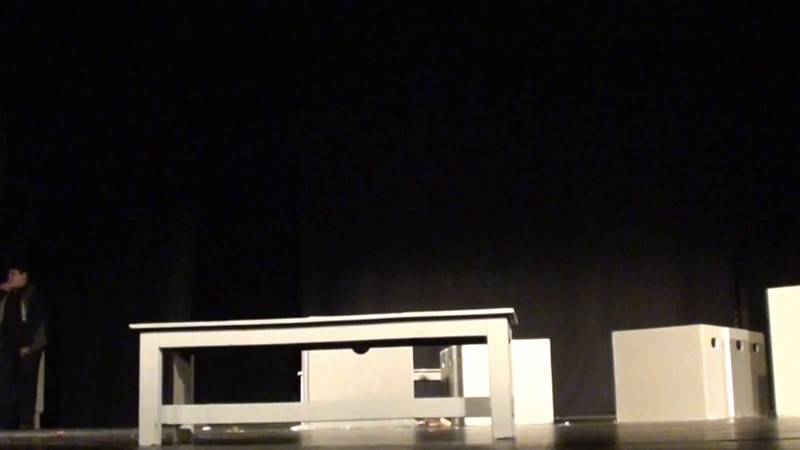 Annie Video- Karen Stallone