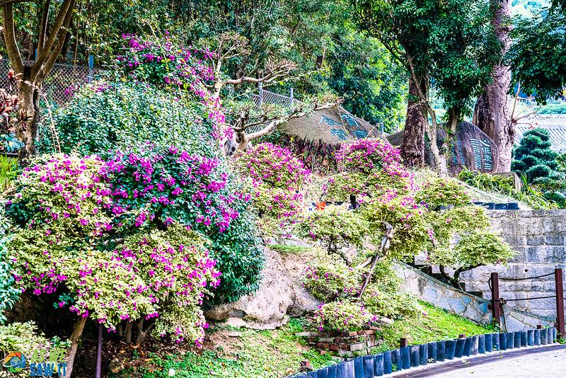 Nan-Lian-Garden-00277.jpg
