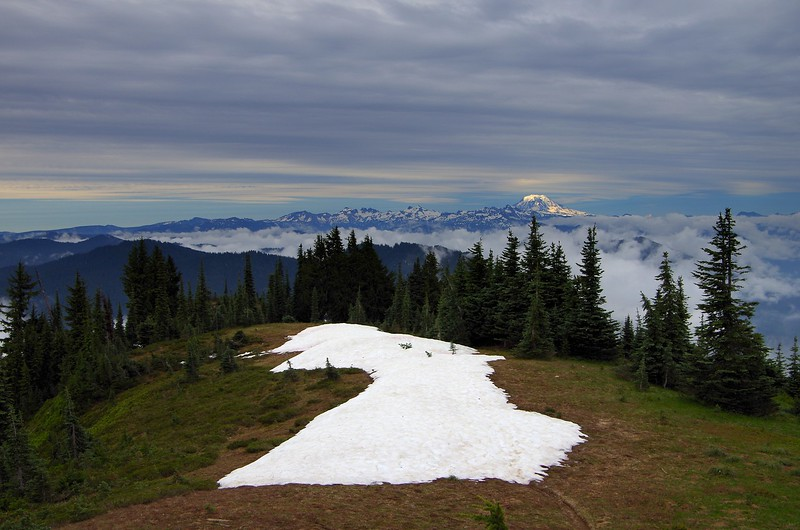Shriner Peak Mount Rainier National Park