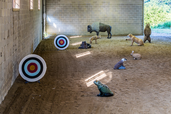 Indoor 3 D Archery Range