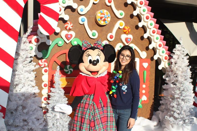 Walt_Disney_Imagineering_Holiday_2017_Individuals_ (10).JPG