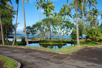 Black Sand Beach Hilo, Hawaii