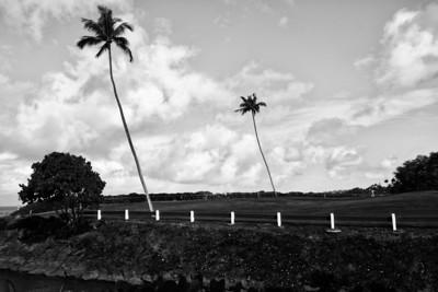 Maui Jan2013