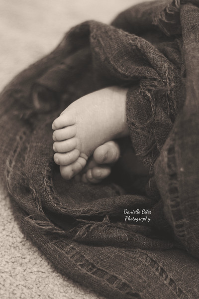 _4_website_newborns-16.jpg