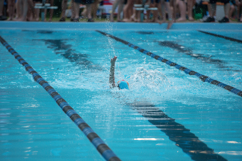 lcs_swimming_kevkramerphoto-512.jpg