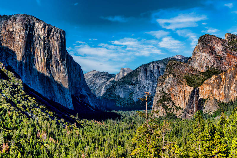 Yosemite Valley from Wanona Road near Tunnel View