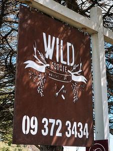 Waiheke EV Launch at Wild Estate