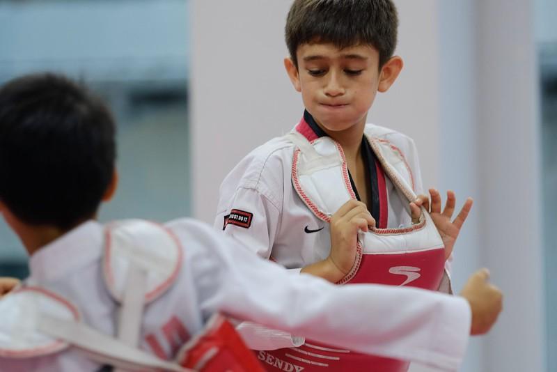 INA Taekwondo Academy 181016 058.jpg