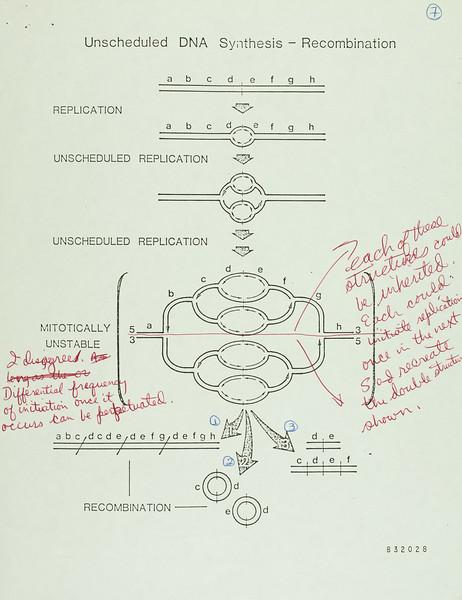 CWG-05 Class Notes - Berkeley