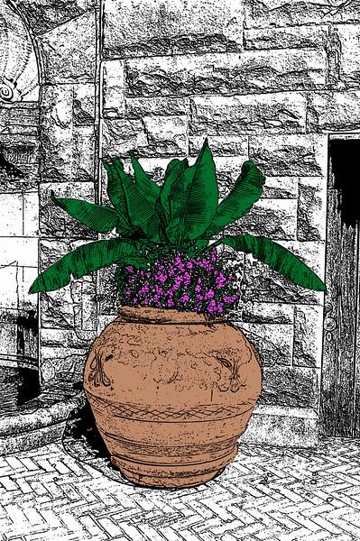 Photo Sketch Art