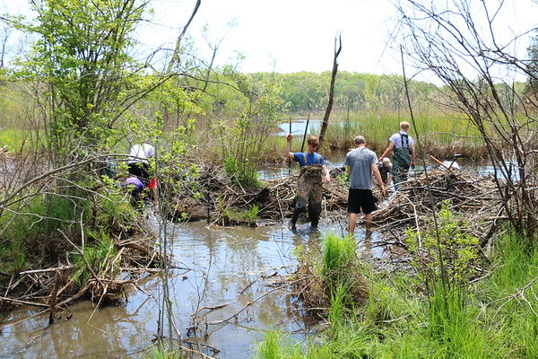Beaver Dam Project - KCHS - 5/16/17