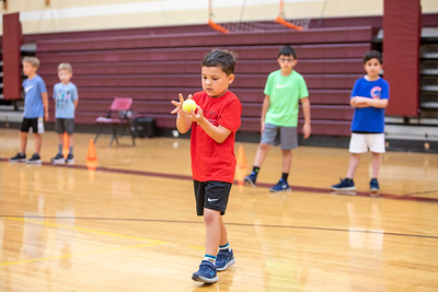 Motor Skills: Reflexes, Catching, and Passing 2019