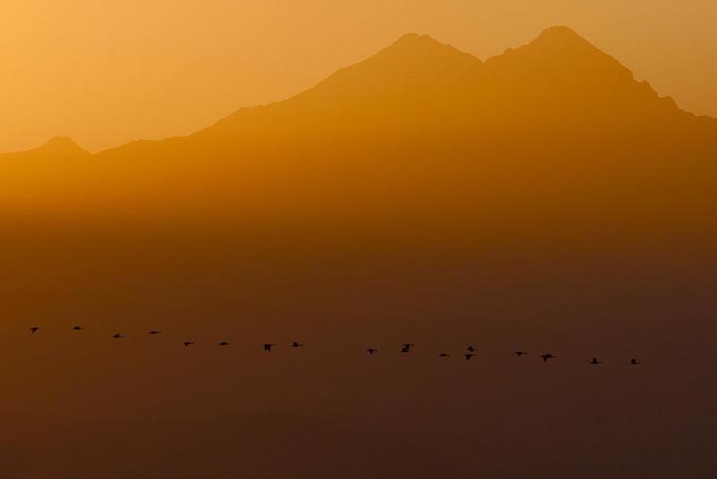 2010 Longmont, CO Sunset-0713_resize.jpg