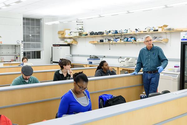 Graduate Labs