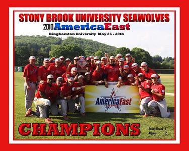 Albany vs Stony Brook - Championship Game