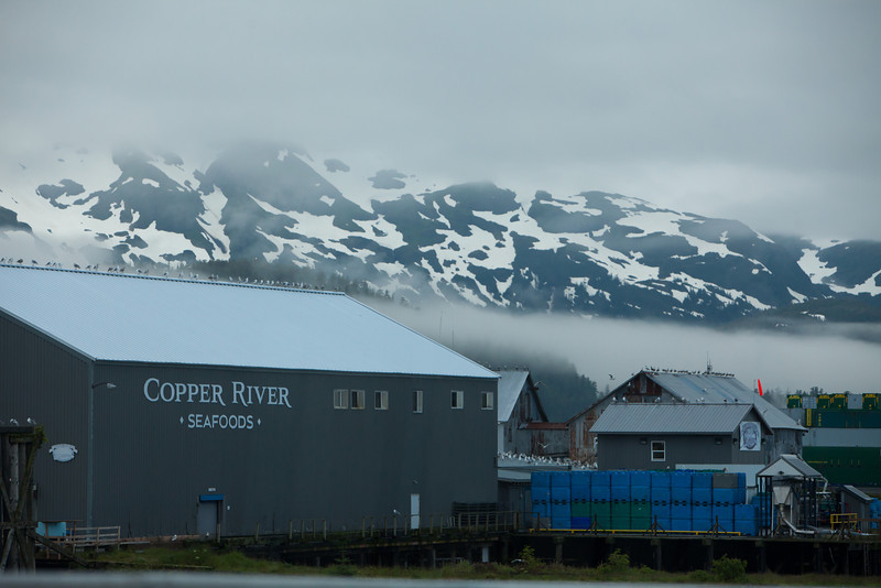 Alaska Copper River-0497.jpg