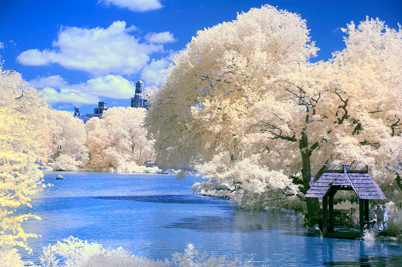 the-lake-central-park-infrared