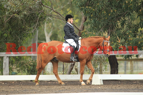 2014 10 11 SVDA Boutique Dressage Elementary Competitive Pony