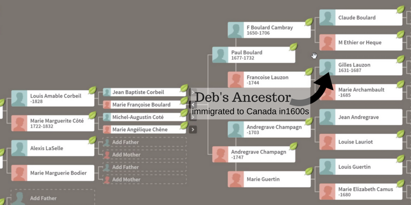 Deb's AncestoryDNA.png