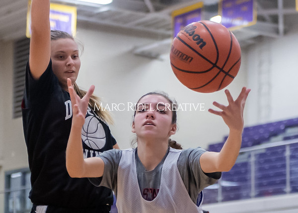 Broughton girls basketball vs Wake Forest. November 14, 2019. D4S_9963