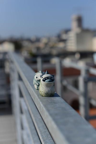 Mokono_Sloke_And_The_Roof-3