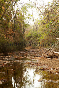 Banita Creek149