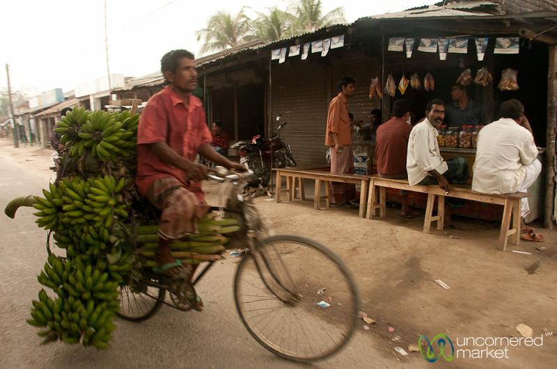 Bicycle Banana Transport - Paharpur, Bangladesh