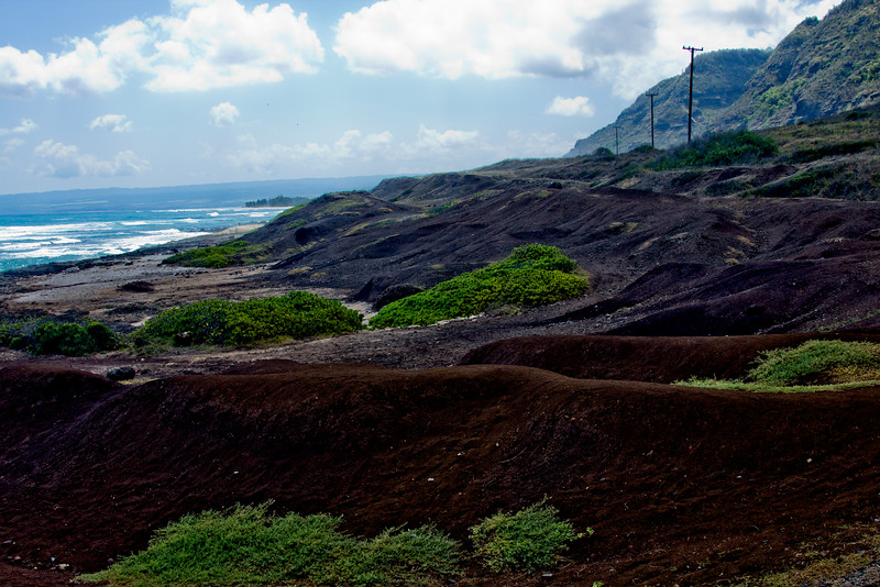 Journey into Oahu Photograph 116