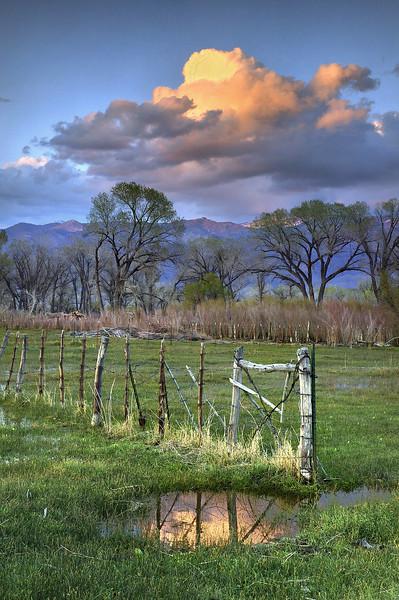 Farmer's Pond - Bishop, California