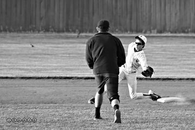 """Springfield Metro Baseball * 2015"""