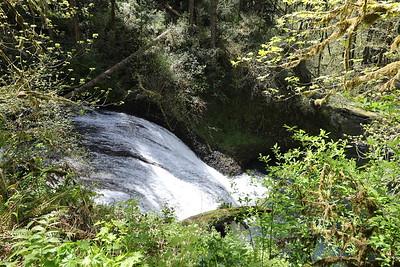 11 Silver Falls 05 Lower North Falls