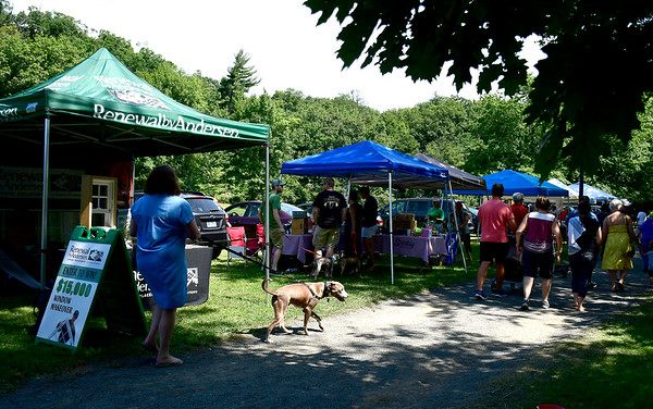 9/1/2018 Mike Orazzi | Staff The Bow Wow in the Park held at Rockwell Park in Bristol Saturday.