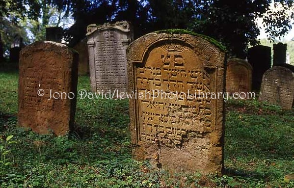 SWITZERLAND, Endingen & Lengnau. Jewish Cemetery. (2006)