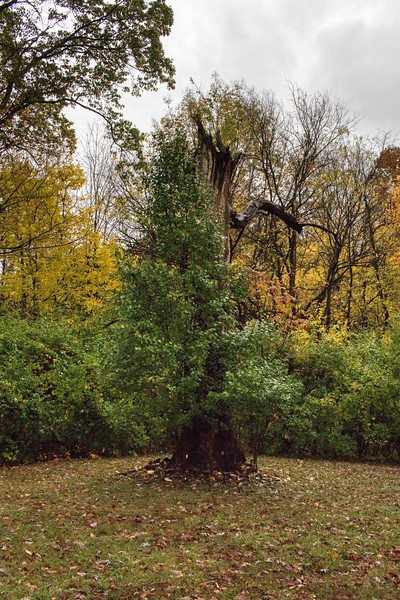 Virgillato Park, Beavercreek, Ohio<br /> <br /> © 2019 Ryan L. Taylor Photography. All Rights Reserved.