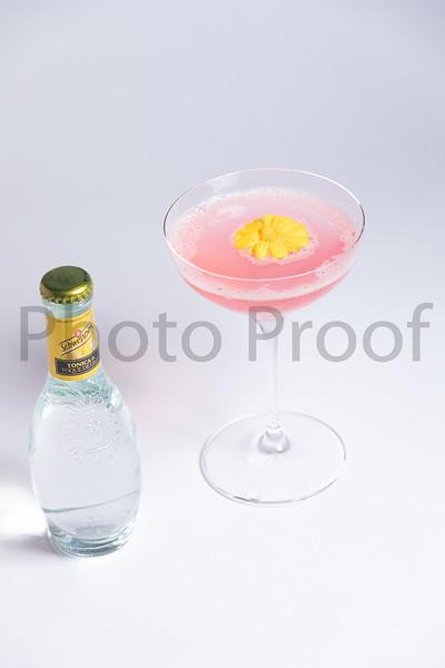 BIRDSONG Schweppes Cocktails 091.jpg